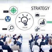 Strategische fit en opties